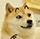 变异的神烦狗QQ表情包
